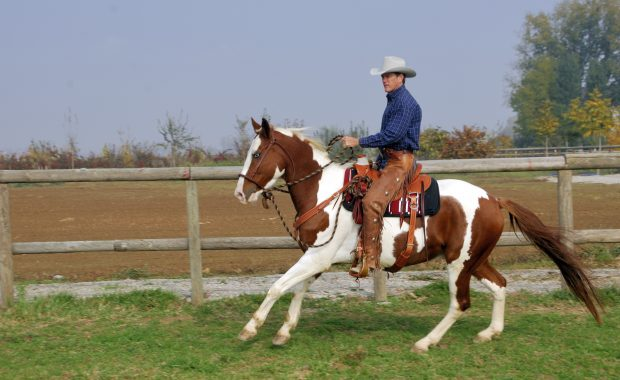 Riding Lessons for Actors
