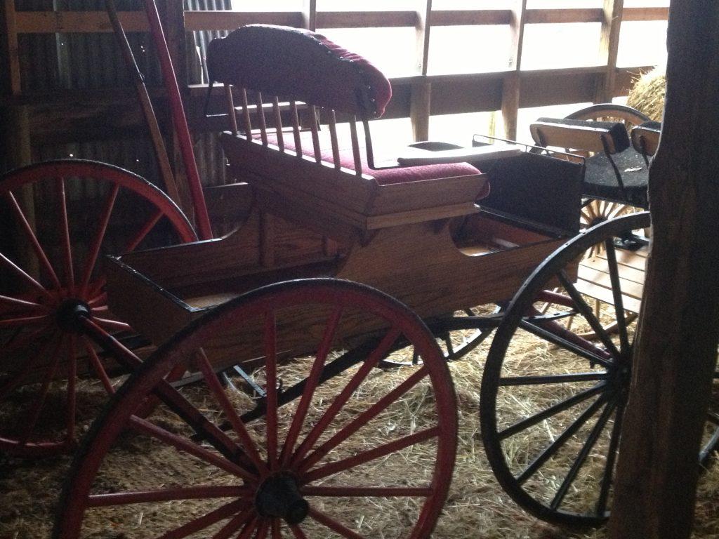 Single seat buggy