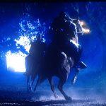 Film Horses - Stunt Riders