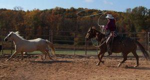 Ed roping wild horse